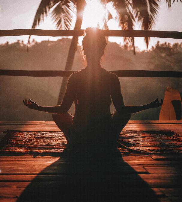 Integration of Cannabis into Wellness